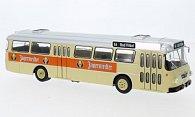 Bussing Senator 12D