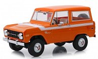 Ford Bronco Special Decor