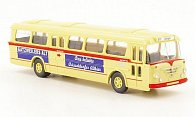Bussing Senator