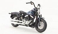Harley Davidson FLSTSB Cross Bones