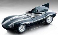 Jaguar D-Type Long Nose